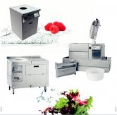 Автоматы для мойки овощей и салата SWA